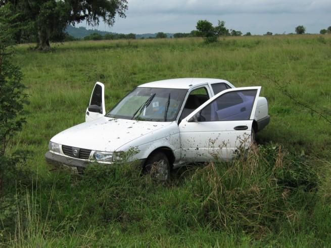 auto36
